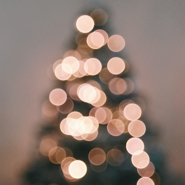 School_of_PracticalPhilosophy_Canberra_ChristmasEvent_2019